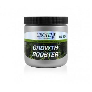 Growth Booster 300grs - Grotek - 1