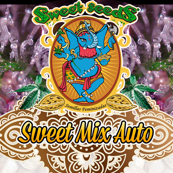 Sweet Mix Auto (x10) - Sweet Seeds - 1