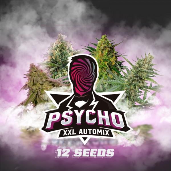 Psycho XXL Automix (x12) - BSF - 1