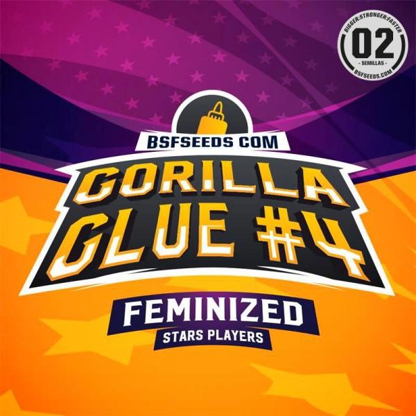 Gorilla Glue (x4) Feminized - BSF - 1