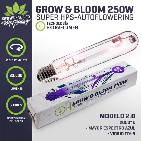 Ampolleta Grow & Bloom 250W - Grow Genetics - 1