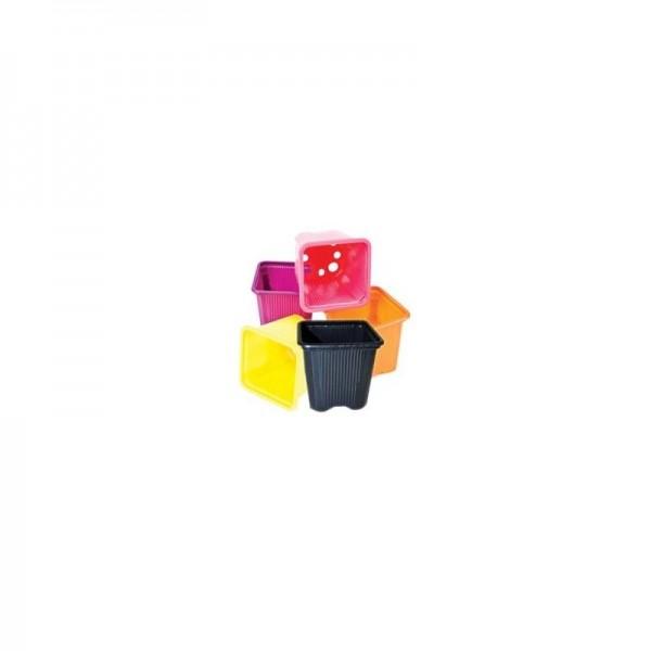 Maceta Cuadrada Negra 7x7x6cm - Tricomar - 1