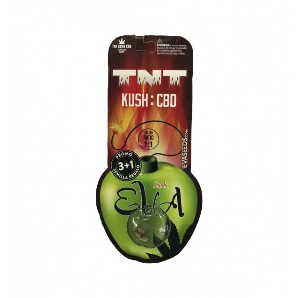 TNT Kush CBD X3+1 -Eva Seeds - 1
